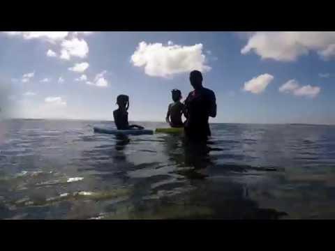 Finding Mozambique's Nemos