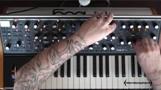 Moog Sub 37- Rhythmic and Percussive Looping