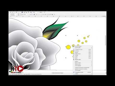 Flower Design In Corel Draw Musicmall