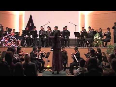 Peter Ilich Tchaikovsky: El Cascanueces, suite Op. 71a - Danza Rusa