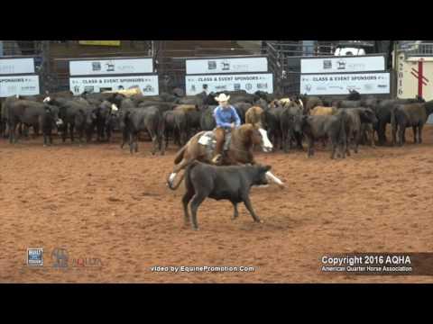 A Judge's Perspective: 2016 AQHYA Cutting World Champion