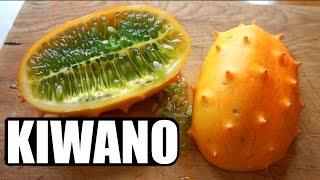 KIWANO | HORNED MELON Taste Test | FRUITY FRUITS