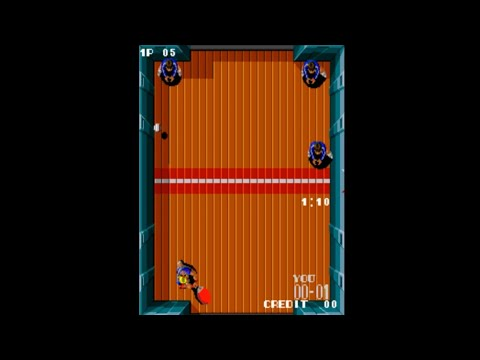 PADDLE MANIA -SNK ARCADE-
