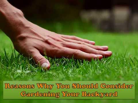 Reasons Why You Should Consider Gardening Your Backyard