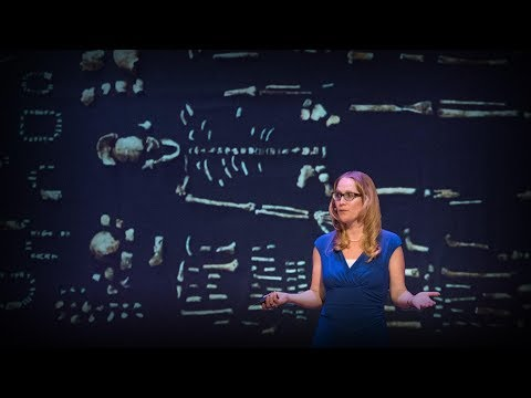 How a new species of ancestors is changing our theory of human evolution | Juliet Brophy