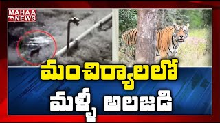 Tiger again caught on CCTV camera in Mancherial..