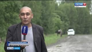 100 миллионов рублей выделят на ремонт дороги Муромцево-Седельниково
