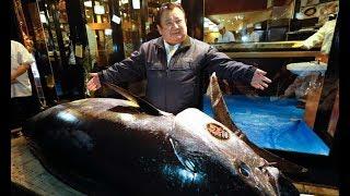 Mãn nhãn trước cách câu cá ngừ siêu khủng của người Nhật