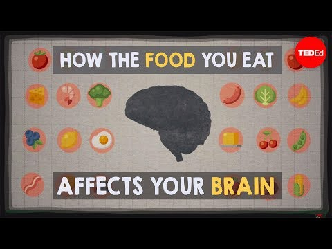 How the food you eat affects your brain - Mia Nacamulli