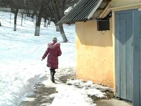 Шкільні туалети. 30% буковинських шкіл не мають внутрішніх вбиралень