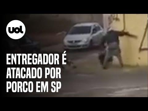 Entregador é atacado por porco no trânsito de Franca (SP)