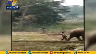 Angry elephant brutally kills two, video goes viral..