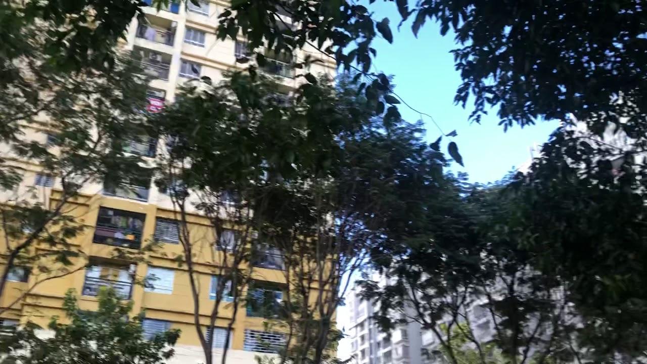 Mở bán 39 căn hộ Petroland, quận 2 giá 39 tr/m2 - Đã có sổ hồng video