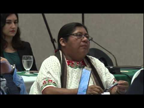 Session 7: Social inclusion and REDD+