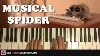 HOW TO PLAY - Lucas the Spider - Musical Spider (Piano Tutorial Lesson)
