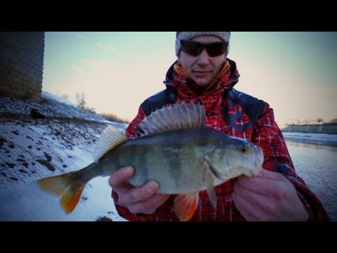 Зимний cпиннинг - отводной поводок и воблеры