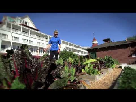 Ingredients Fresh from Hotel del Coronado's Herb Garden