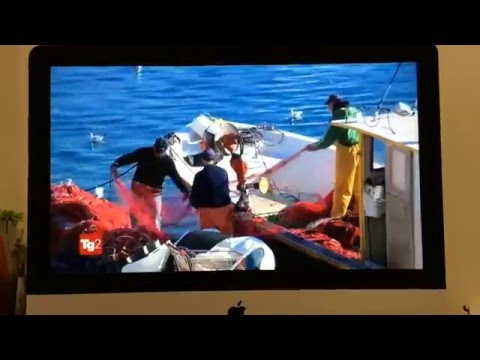 Sì Viaggiare - Un viaggio tra Gallipoli, Santa Maria al Bagno e Porto Cesareo