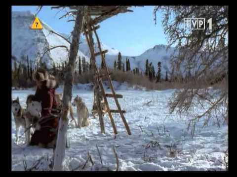 Amok 2017 HD Lektor PL film do pobrania za darmo