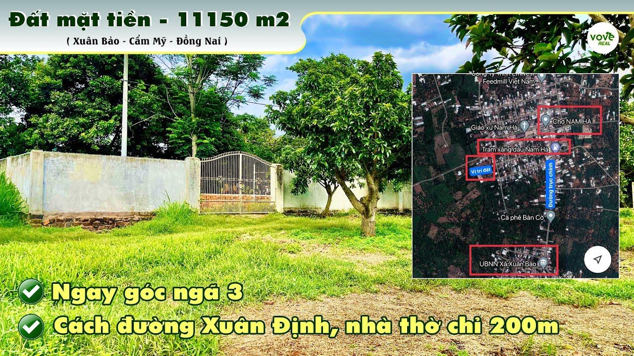 D055 - bán vườn 11150m2 có 2 mặt tiền, 300m2 thổ cư, giá 10 tỷ tại Cẩm Mỹ, Đồng Nai video