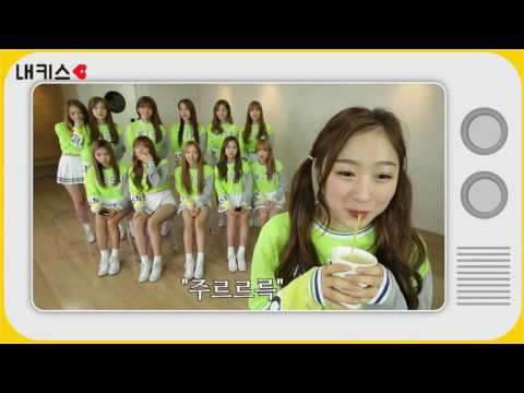 WJSN/Cosmic Girls Funny Moments Part 1