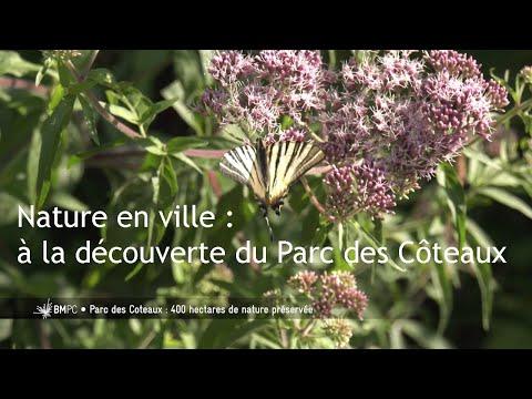 Nature en ville : le Parc des Coteaux offre 400 hectares de nature préservée aux habitants