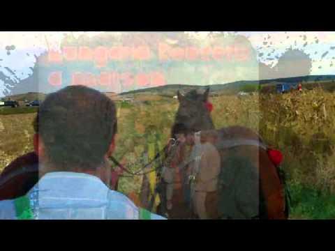 Hungária - Koncert a Marson