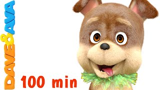 Bingo Dog Song | Kids Songs & Nursery Rhymes | Dave and Ava - YouTube