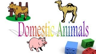 Domestic Animals Pictures With Names Pdf | Imaganationface org