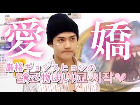 愛されマンネセフンと甘々ヒョン達(日本語字幕)EXO