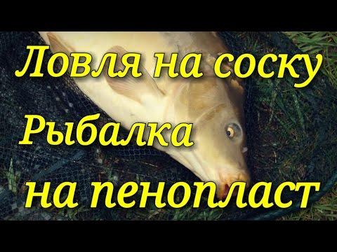 ловля крупных рыб на пенопласт
