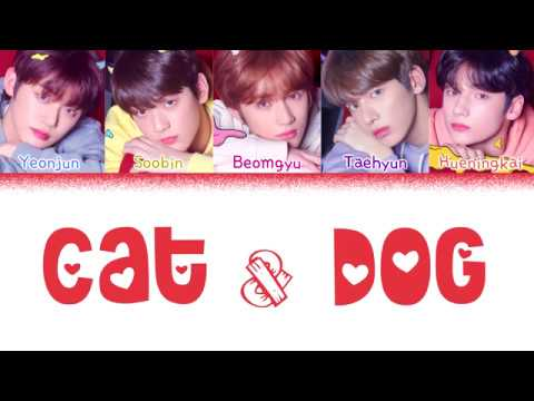 TXT (투모로우바이투게더) - 'CAT & DOG' (Color Coded Lyrics Eng/Rom/Han/가사)