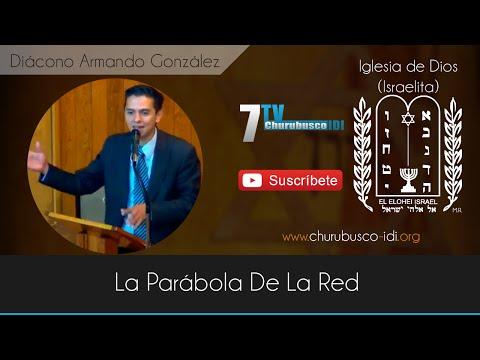 Diácono Armando González - La Parábola De La Red (21-Nov-2014)