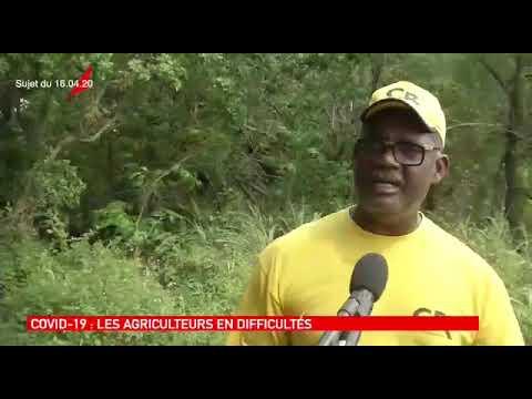 Guadeloupe : la colère des agriculteurs