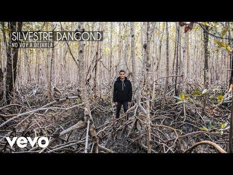 Silvestre Dangond - No Voy a Dejarla (Audio)