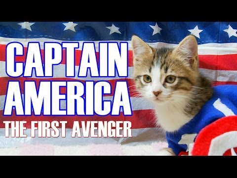 Kittens And Captain America