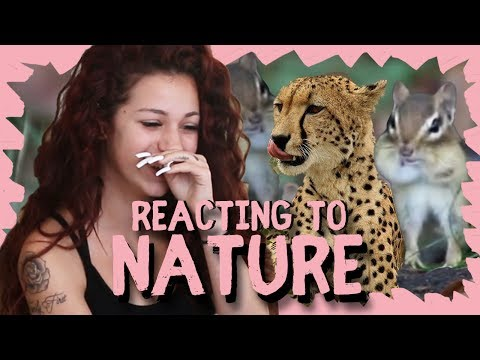Danielle Bregoli reacts to Nature