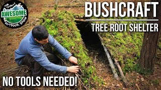 Bushcraft Shelters - Tree Root Shelter with no tools   TA Outdoors