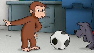 Jorge el Curioso | EL ESCAPE | Dibujos animados para niños | WildBrain
