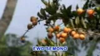 Luntur - Gesang - Langgam Jawa - SD 3 Megawon