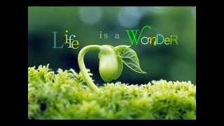 Song of Life ~ Sat Gurprasad ~ Mirabai Ceiba