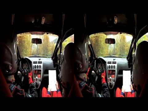 Rally Vsetin 2010 RZ1 - Pohner Husak - Honda Civic Type R 3D onboard
