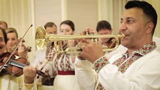 Cristi Tractor & Orchestra Lautarii - Hora cumetrilor