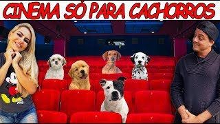 CINEMA SÓ PARA CACHORROS