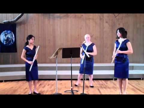 Areon Flutes Education! Areon Chamber Music Institute Performs Mozart Allegro, Weiss Funf Skizzen