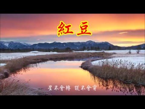 王菲  《红豆》 ( 词: 林夕 曲:柳重言)  Faye Wong