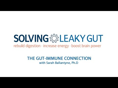 How a Leaky Gut Jumpstarts Autoimmunity and Massive Inflammation