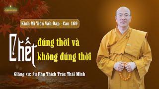 Chết Đúng Thời Và Chết Không Đúng Thời | Kinh Mi Tiên Vấn Đáp - Câu 169 | Thầy Thích Trúc Thái Minh