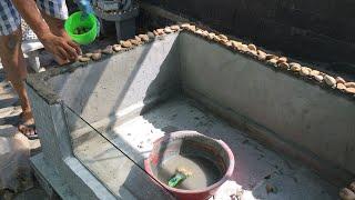 Make Goldfish tank with Styrofoam box😍 Làm hồ cá ba đuôi bằng Thùng xốp