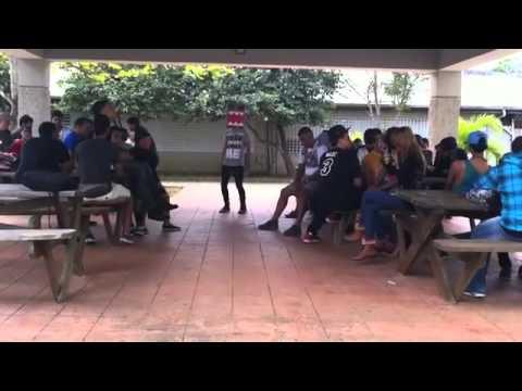 Baixar Halen Shake American University De Manatí